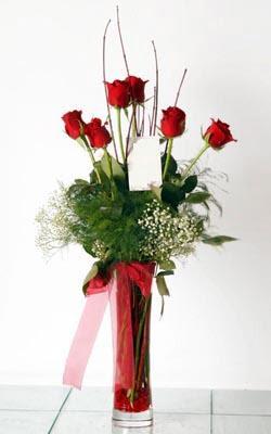 İzmit çiçek gönderme sitemiz güvenlidir  6 adet kirmizi gül ve cam yada mika vazo