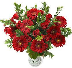 5 adet kirmizi gül 5 adet gerbera aranjmani  İzmit çiçek online çiçek siparişi