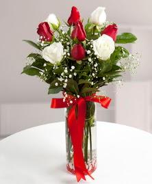 5 kırmızı 4 beyaz gül vazoda  İzmit çiçek gönderme sitemiz güvenlidir