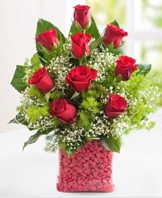 Cam içerisinde 9 adet kırmızı gül  İzmit kaliteli taze ve ucuz çiçekler