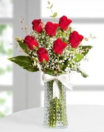 Cam vazoda 7 adet kırmızı gül  İzmit anneler günü çiçek yolla