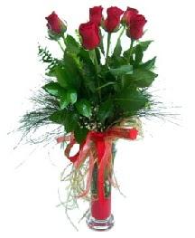 vazo içerisinde 5 kırmızı gül  İzmit çiçek siparişi sitesi