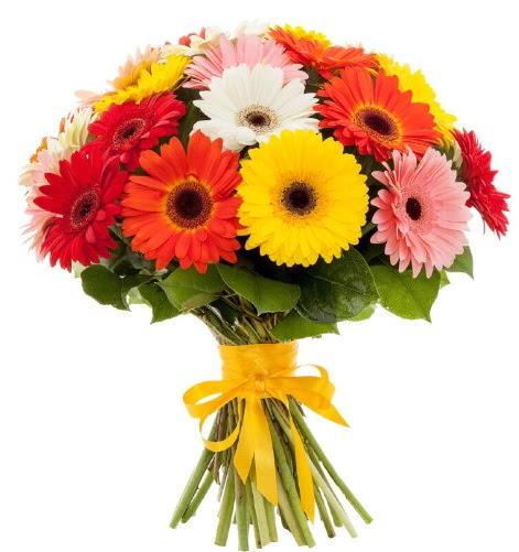 Gerbera demeti buketi  İzmit 14 şubat sevgililer günü çiçek