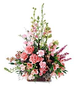 İzmit hediye sevgilime hediye çiçek  mevsim çiçeklerinden özel