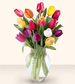 İzmit güvenli kaliteli hızlı çiçek  13 adet cam yada mika vazoda laleler