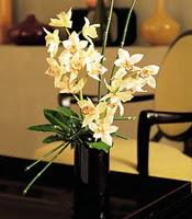 İzmit güvenli kaliteli hızlı çiçek  cam yada mika vazo içerisinde dal orkide