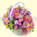 İzmit internetten çiçek satışı  bir sepet dolusu kir çiçegi  İzmit online çiçek gönderme sipariş