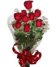 9 adet kaliteli kirmizi gül   İzmit çiçekçiler