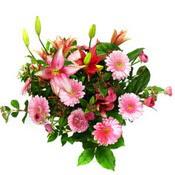 lilyum ve gerbera çiçekleri - çiçek seçimi -  İzmit cicekciler , cicek siparisi