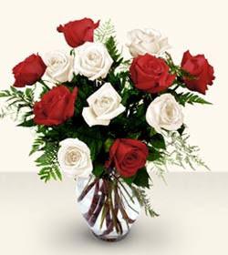 İzmit çiçek yolla  6 adet kirmizi 6 adet beyaz gül cam içerisinde