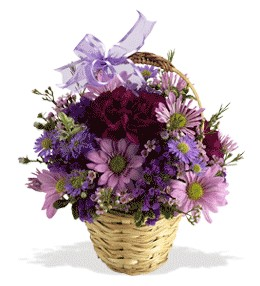 İzmit çiçek yolla  sepet içerisinde krizantem çiçekleri