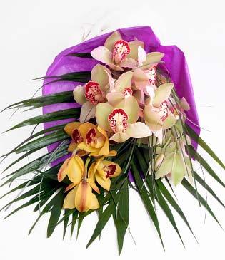 İzmit çiçek gönderme sitemiz güvenlidir  1 adet dal orkide buket halinde sunulmakta