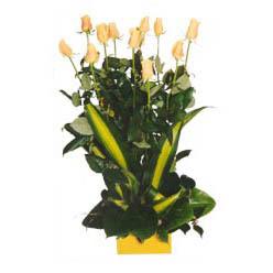 12 adet beyaz gül aranjmani  İzmit çiçekçi mağazası