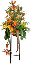 İzmit çiçek mağazası , çiçekçi adresleri  perförje tanzimi dügün nikah ve açilislara