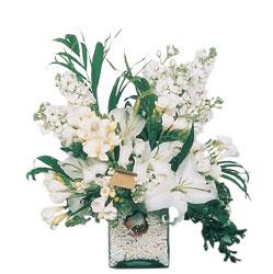 İzmit yurtiçi ve yurtdışı çiçek siparişi  sadece beyazlardan olusmus mevsim cam yada mika tanzim