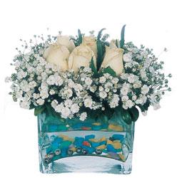 İzmit çiçek servisi , çiçekçi adresleri  mika yada cam içerisinde 7 adet beyaz gül