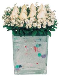İzmit çiçek servisi , çiçekçi adresleri  7 adet beyaz gül cam yada mika vazo tanzim