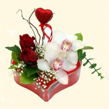 İzmit çiçek satışı  1 kandil orkide 5 adet kirmizi gül mika kalp