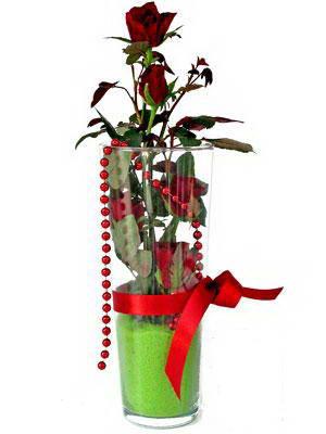 İzmit çiçek yolla , çiçek gönder , çiçekçi   Cam yada mika içerisinde 9 adet kirmizi gül - sevdiklerinize özel
