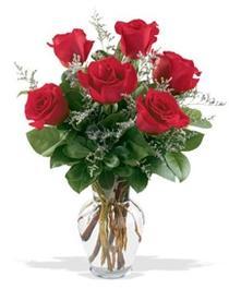 İzmit online çiçek gönderme sipariş  7 adet kirmizi gül cam yada mika vazoda sevenlere