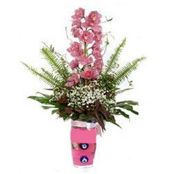 İzmit çiçek online çiçek siparişi  cam yada mika vazo içerisinde tek dal orkide çiçegi