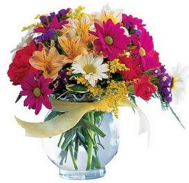 İzmit kaliteli taze ve ucuz çiçekler  cam yada mika içerisinde karisik mevsim çiçekleri