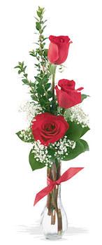 İzmit çiçek gönderme sitemiz güvenlidir  mika yada cam vazoda 3 adet kirmizi gül