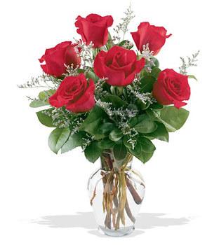İzmit çiçek gönderme sitemiz güvenlidir  cam yada mika vazoda 6 adet kirmizi gül