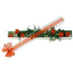 İzmit çiçek mağazası , çiçekçi adresleri  6 adet kirmizi gül kutu içerisinde