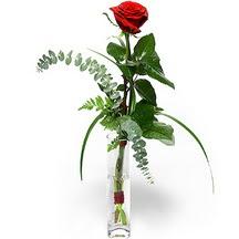 İzmit çiçek gönderme  Sana deger veriyorum bir adet gül cam yada mika vazoda