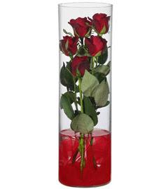 cam içerisinde 7 adet kirmizi gül  İzmit güvenli kaliteli hızlı çiçek