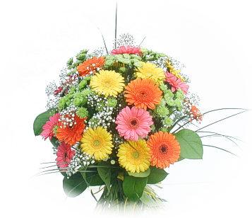 13 adet gerbera çiçegi buketi  İzmit çiçek yolla , çiçek gönder , çiçekçi