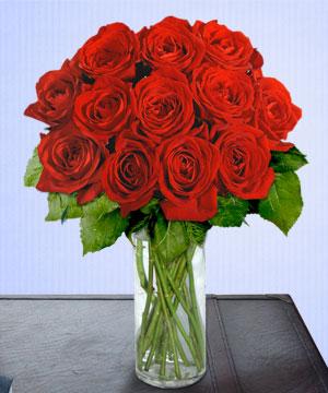 Anneme 12 adet cam içerisinde kirmizi gül  İzmit çiçek mağazası , çiçekçi adresleri