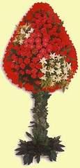 İzmit cicekciler , cicek siparisi  dügün açilis çiçekleri  İzmit çiçek , çiçekçi , çiçekçilik