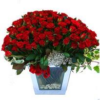 İzmit güvenli kaliteli hızlı çiçek   101 adet kirmizi gül aranjmani