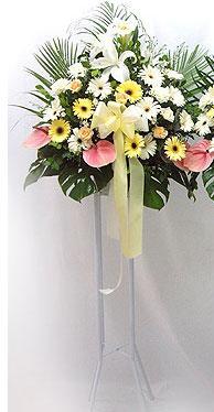 İzmit çiçek yolla , çiçek gönder , çiçekçi    perförje çiçegi dügün çiçekleri