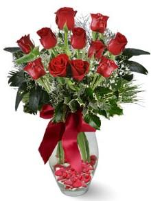 9 adet gül  İzmit kaliteli taze ve ucuz çiçekler  kirmizi gül