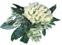 İzmit yurtiçi ve yurtdışı çiçek siparişi  9 Beyaz gül Özel kisiler için