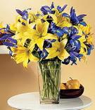 İzmit çiçekçi telefonları  Lilyum ve mevsim  çiçegi özel