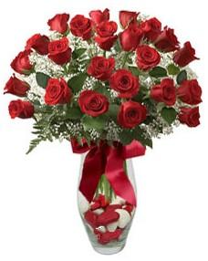 17 adet essiz kalitede kirmizi gül  İzmit hediye çiçek yolla