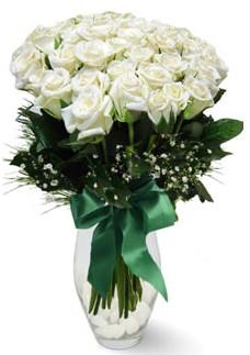 19 adet essiz kalitede beyaz gül  İzmit güvenli kaliteli hızlı çiçek