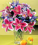 İzmit hediye çiçek yolla  Sevgi bahçesi Özel  bir tercih