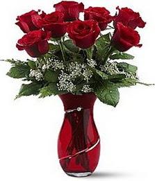 Vazo içinde 8 adet kirmizilar içinde güller  İzmit yurtiçi ve yurtdışı çiçek siparişi