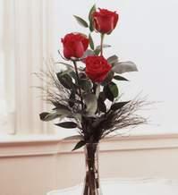 İzmit kaliteli taze ve ucuz çiçekler  Vazoda 3 adet güzel gül