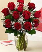 Sevgilime hediye 9 adet 1.ci kalite gül  İzmit çiçekçi telefonları