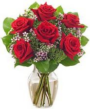 Kız arkadaşıma hediye 6 kırmızı gül  İzmit yurtiçi ve yurtdışı çiçek siparişi
