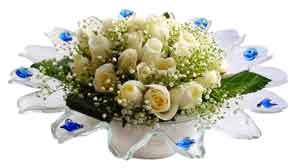 İzmit çiçek , çiçekçi , çiçekçilik  11 adet Beyaz güller özel cam tanzim