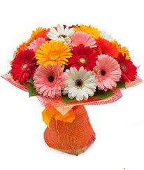 Renkli gerbera buketi  İzmit çiçekçi telefonları
