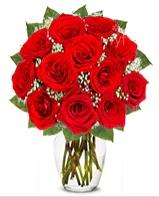 12 adet vazoda kıpkırmızı gül  İzmit İnternetten çiçek siparişi