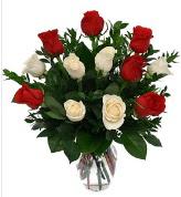 Vazo içerisinde 6 kırmızı 6 beyaz gül  İzmit çiçek online çiçek siparişi